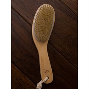 Picture of Dry Brush Small